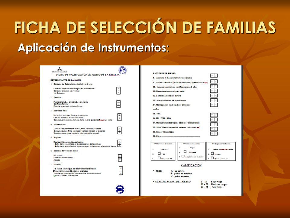 FICHA DE SELECCIÓN DE FAMILIAS Aplicación de Instrumentos :