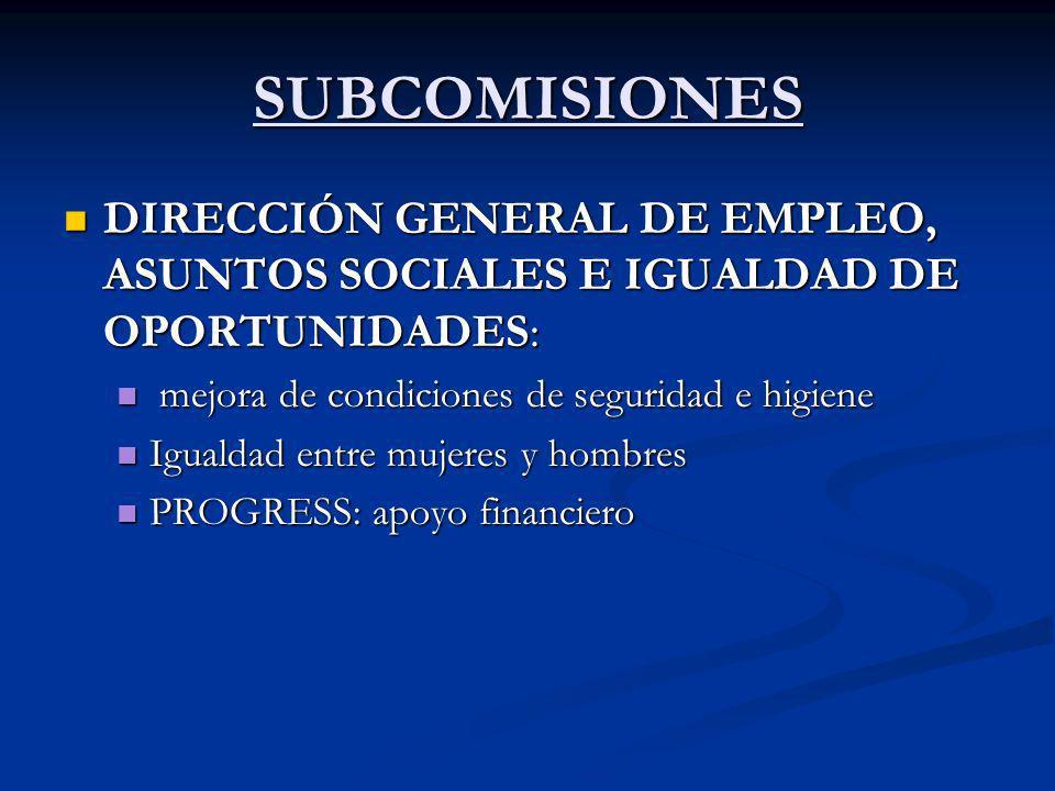 SUBCOMISIONES DIRECCIÓN GENERAL DE EMPLEO, ASUNTOS SOCIALES E IGUALDAD DE OPORTUNIDADES: DIRECCIÓN GENERAL DE EMPLEO, ASUNTOS SOCIALES E IGUALDAD DE O