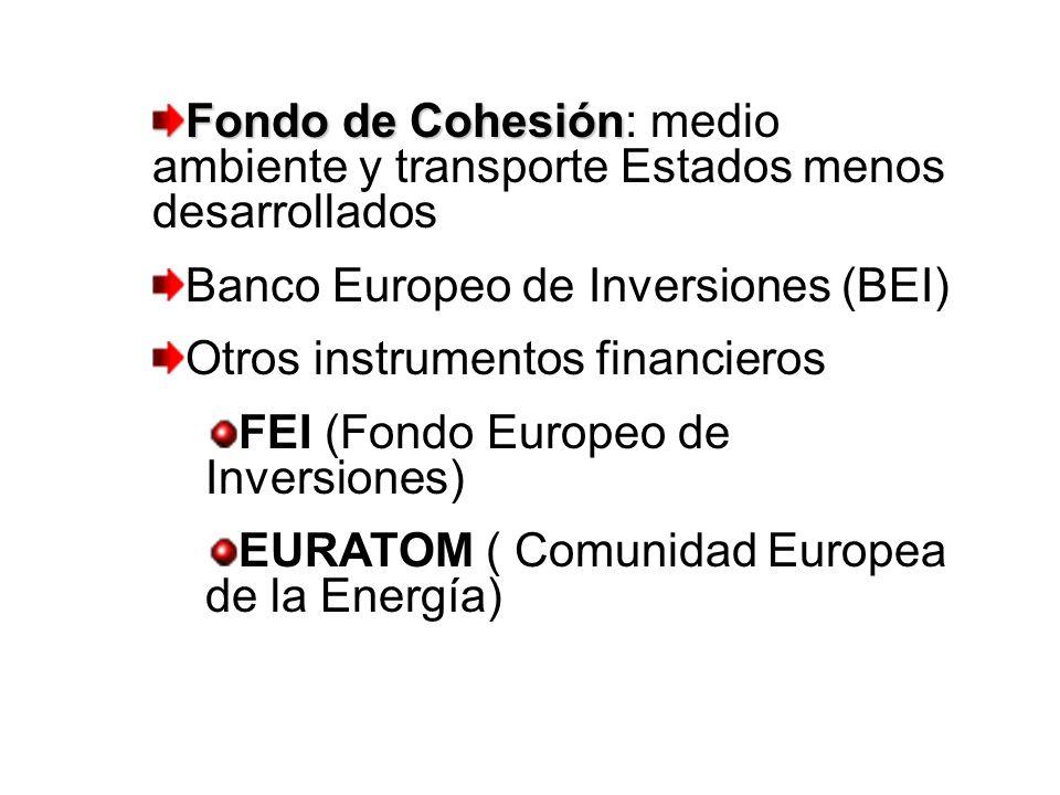 Fondo de Cohesión Fondo de Cohesión: medio ambiente y transporte Estados menos desarrollados Banco Europeo de Inversiones (BEI) Otros instrumentos fin