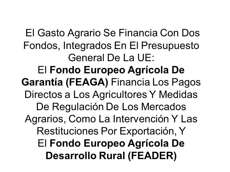 El Gasto Agrario Se Financia Con Dos Fondos, Integrados En El Presupuesto General De La UE: El Fondo Europeo Agrícola De Garantía (FEAGA) Financia Los