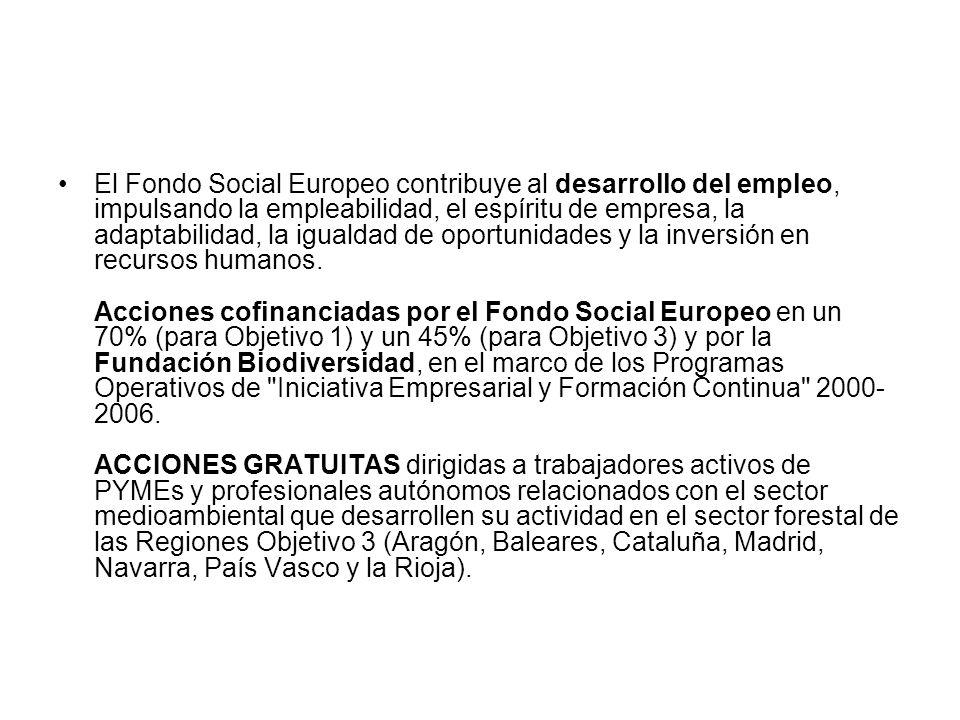 El Fondo Social Europeo contribuye al desarrollo del empleo, impulsando la empleabilidad, el espíritu de empresa, la adaptabilidad, la igualdad de opo