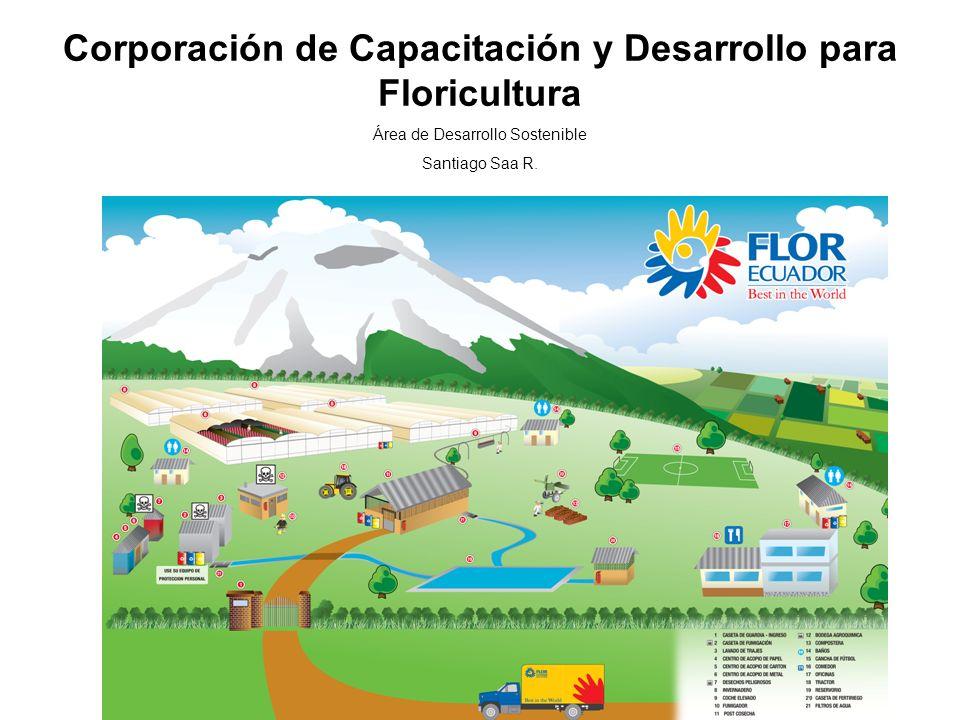 Corporación de Capacitación y Desarrollo para Floricultura Área de Desarrollo Sostenible Santiago Saa R.