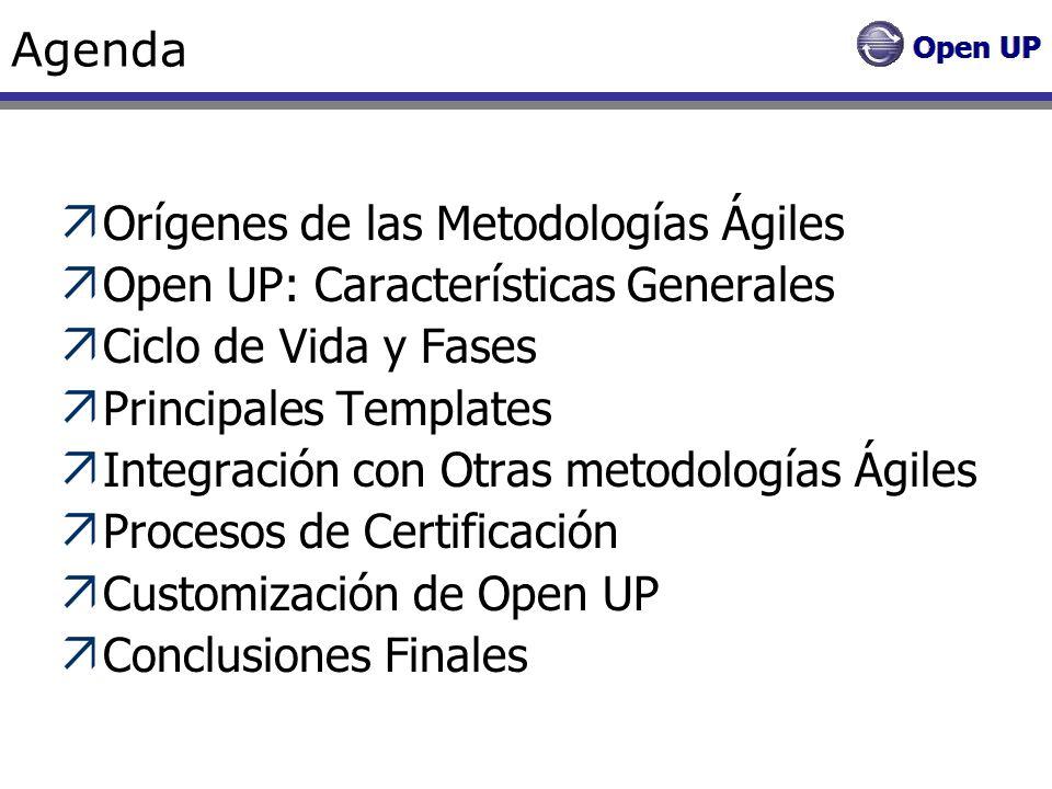Open Up - Principales Templates Plan de Iteración - Objetivos Informar desde un punto centralizado objetivos, asignaciones de trabajo y criterios de evaluación para la iteración.