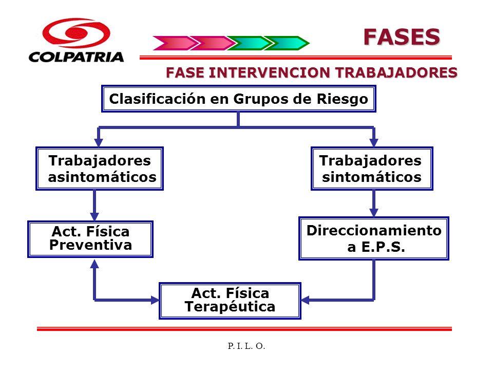P. I. L. O. FASE INTERVENCION TRABAJADORES Clasificación en Grupos de Riesgo Trabajadores asintomáticos Act. Física Preventiva Trabajadores sintomátic