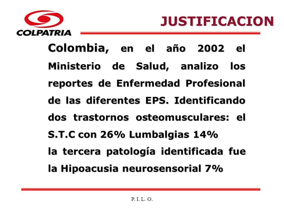 P. I. L. O. Colombia, en el año 2002 el Ministerio de Salud, analizo los reportes de Enfermedad Profesional de las diferentes EPS. Identificando dos t
