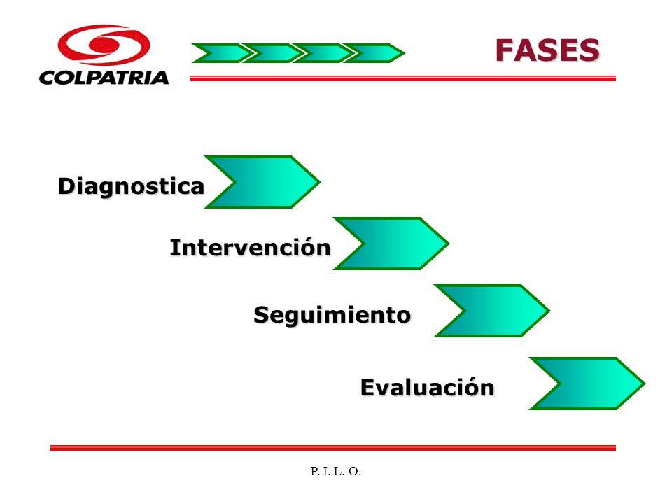 FASE DIAGNOSTICA Análisis de Estadísticas accidentalidad, ausentismo el Panorama General de Factores de Riesgo PILO Encuesta de morbilidad sentida para segmento cervicobraquial y dorsolumbar.