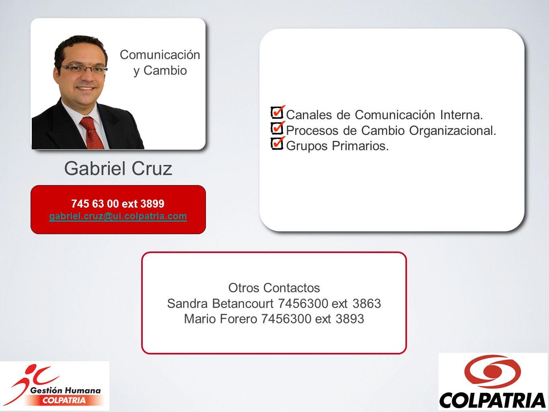 Gabriel Cruz Comunicación y Cambio Canales de Comunicación Interna. Procesos de Cambio Organizacional. Grupos Primarios. Canales de Comunicación Inter