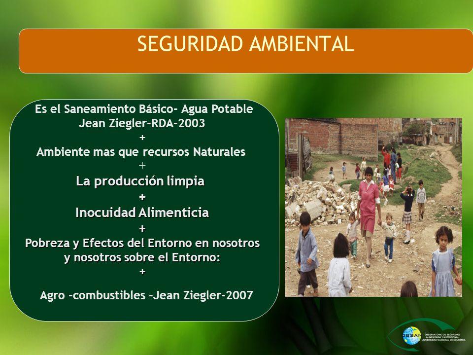 SEGURIDAD AMBIENTAL Es el Saneamiento Básico- Agua Potable Jean Ziegler-RDA-2003 + Ambiente mas que recursos Naturales + La producción limpia + Inocui