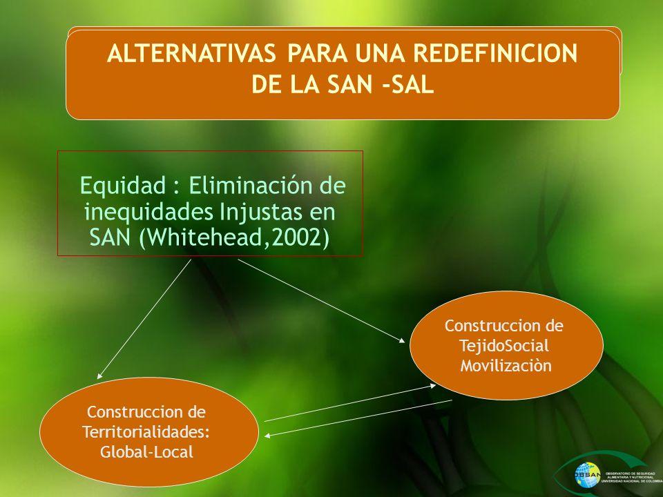 Equidad : Eliminación de inequidades Injustas en SAN (Whitehead,2002) ALTERNATIVAS PARA UNA REDEFINICION DE LA SAN -SAL Construccion de TejidoSocial M