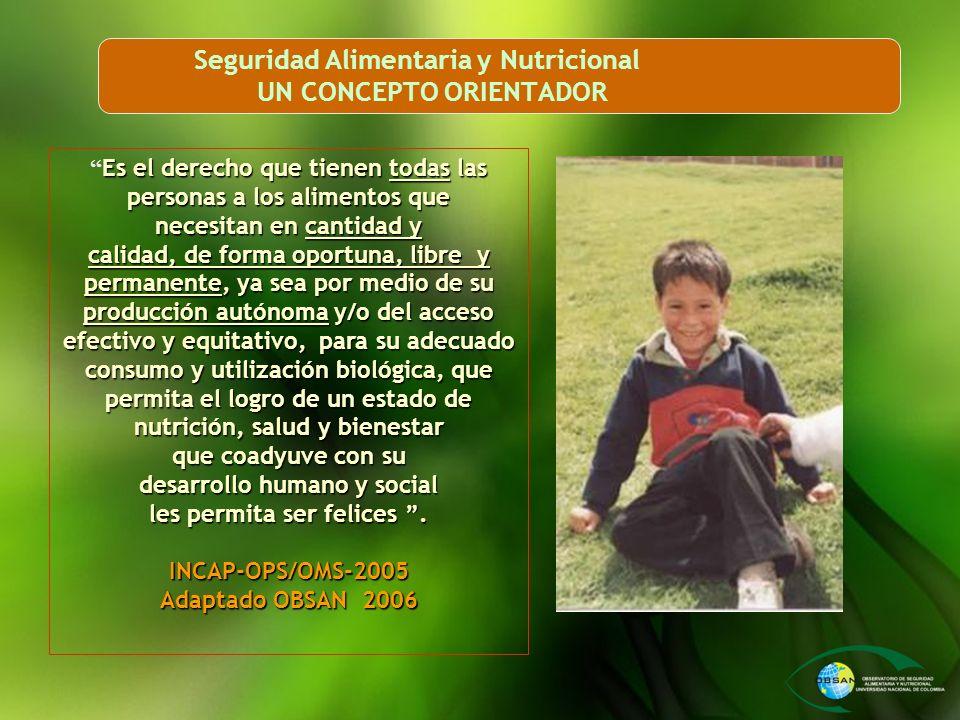 Seguridad Alimentaria y Nutricional UN CONCEPTO ORIENTADOR Es el derecho que tienen todas las personas a los alimentos que necesitan en cantidad y cal