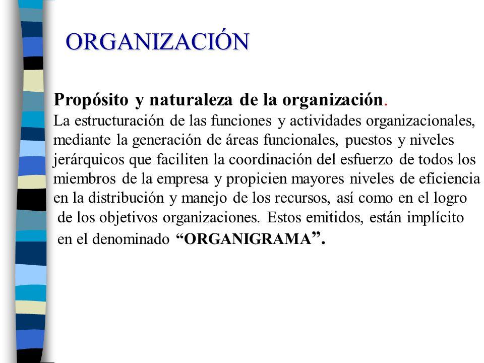 Propósito y naturaleza de la organización. La estructuración de las funciones y actividades organizacionales, mediante la generación de áreas funciona