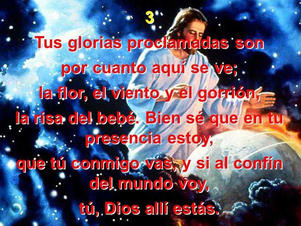 3 Tus glorias proclamadas son por cuanto aquí se ve; la flor, el viento y el gorrión, la risa del bebé. Bien sé que en tu presencia estoy, que tú conm