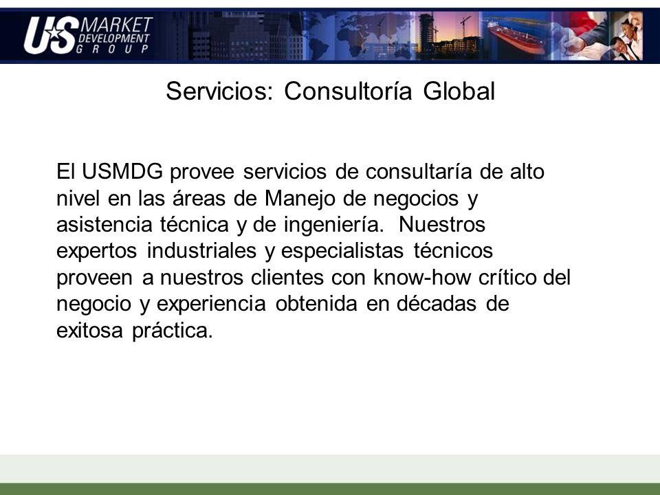 Servicios: Consultoría Global El USMDG provee servicios de consultaría de alto nivel en las áreas de Manejo de negocios y asistencia técnica y de ingeniería.