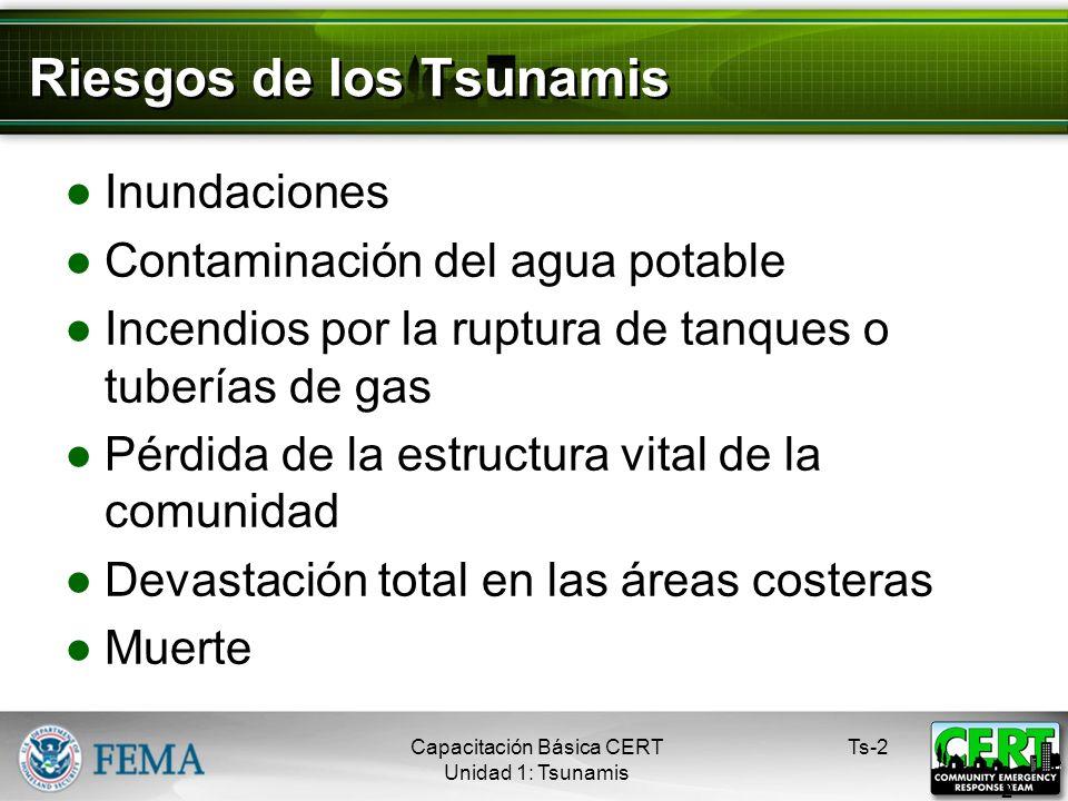 Riesgos de los Tsunamis Inundaciones Contaminación del agua potable Incendios por la ruptura de tanques o tuberías de gas Pérdida de la estructura vital de la comunidad Devastación total en las áreas costeras Muerte Ts-2 2 Capacitación Básica CERT Unidad 1: Tsunamis