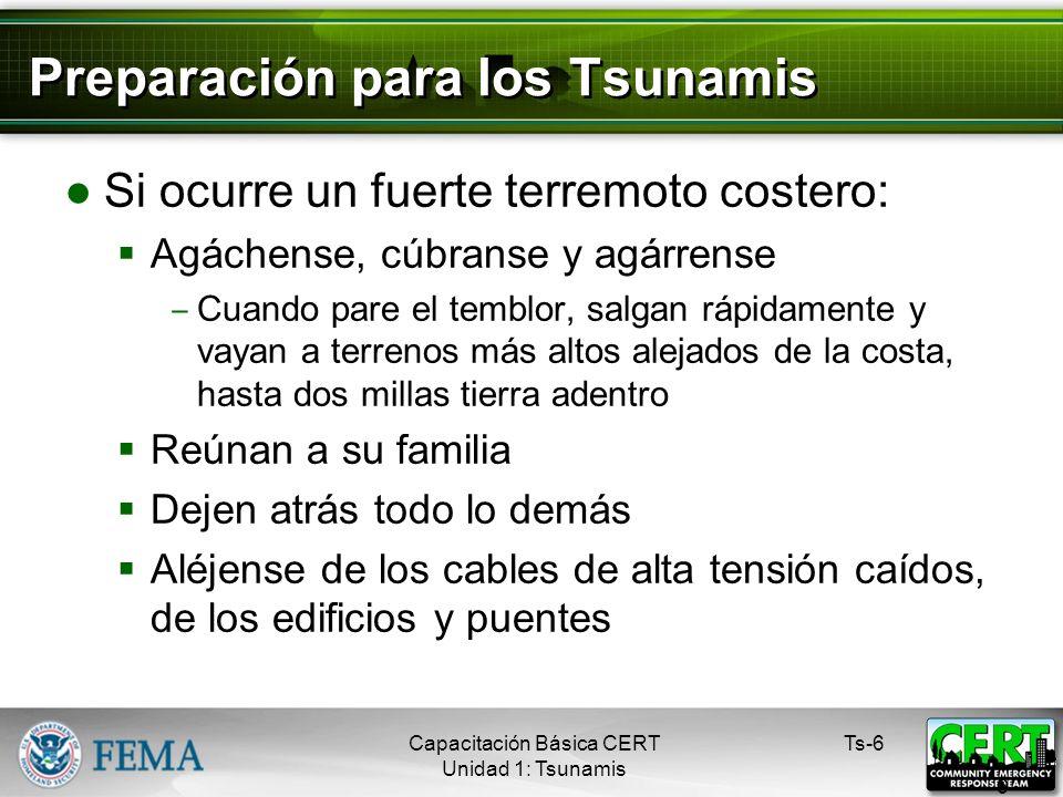 Preparación para los Tsunamis Si ocurre un fuerte terremoto costero: Agáchense, cúbranse y agárrense Cuando pare el temblor, salgan rápidamente y vayan a terrenos más altos alejados de la costa, hasta dos millas tierra adentro Reúnan a su familia Dejen atrás todo lo demás Aléjense de los cables de alta tensión caídos, de los edificios y puentes Ts-6 6 Capacitación Básica CERT Unidad 1: Tsunamis