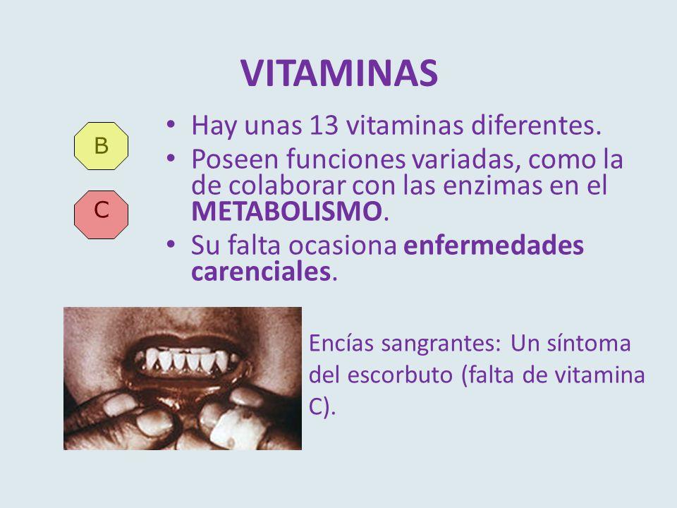 VITAMINAS Hay unas 13 vitaminas diferentes. Poseen funciones variadas, como la de colaborar con las enzimas en el METABOLISMO. Su falta ocasiona enfer