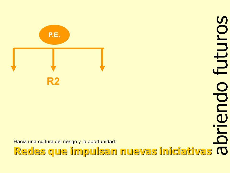 abriendo futuros Hacia una cultura del riesgo y la oportunidad : Redes que impulsan nuevas iniciativas P.E..