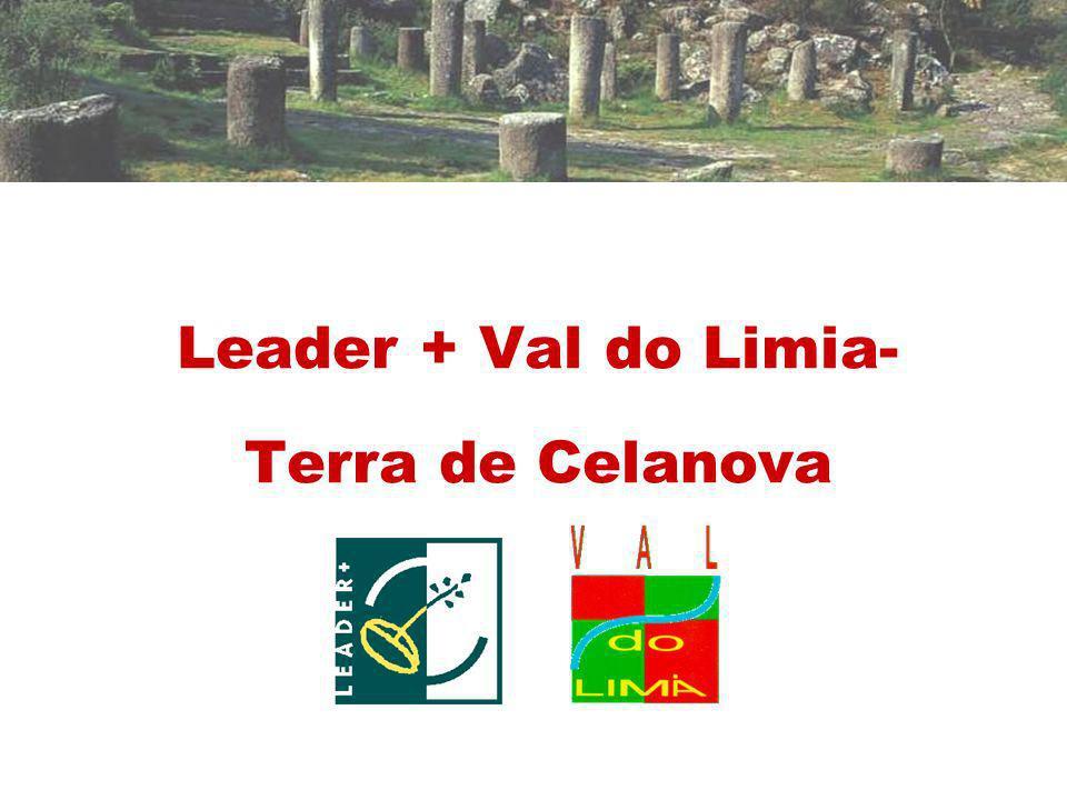 LEADER + VAL DO LIMIA-TERRA DE CELANOVA Territorio El territorio de actuación está situado al suroeste de la provincia de Ourense en sus límites con la provincia de Pontevedra y con Portugal.