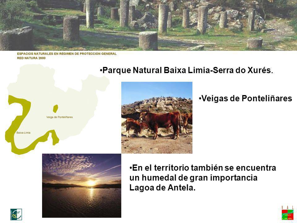 Parque Natural Baixa Limia-Serra do Xurés. Veigas de Ponteliñares En el territorio también se encuentra un humedal de gran importancia Lagoa de Antela