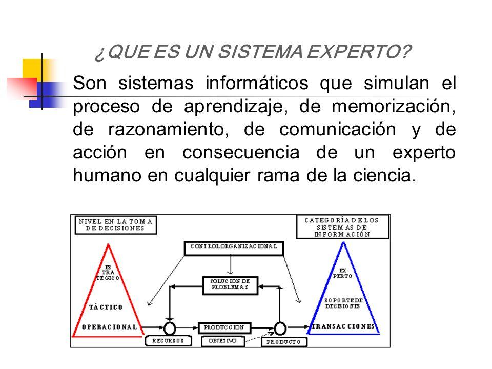 Son sistemas informáticos que simulan el proceso de aprendizaje, de memorización, de razonamiento, de comunicación y de acción en consecuencia de un e