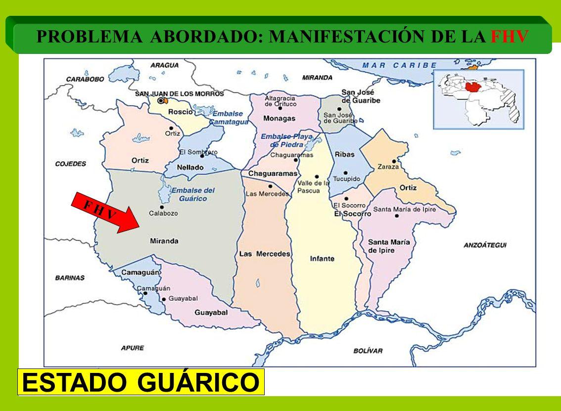 PROBLEMA ABORDADO: MANIFESTACIÓN DE LA FHV F H V ESTADO GUÁRICO