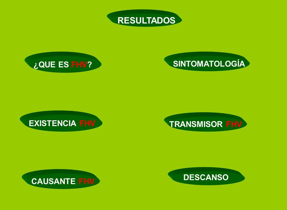 SINTOMATOLOGÍA EXISTENCIA FHV TRANSMISOR FHV CAUSANTE FHV RESULTADOS ¿QUE ES FHV? DESCANSO