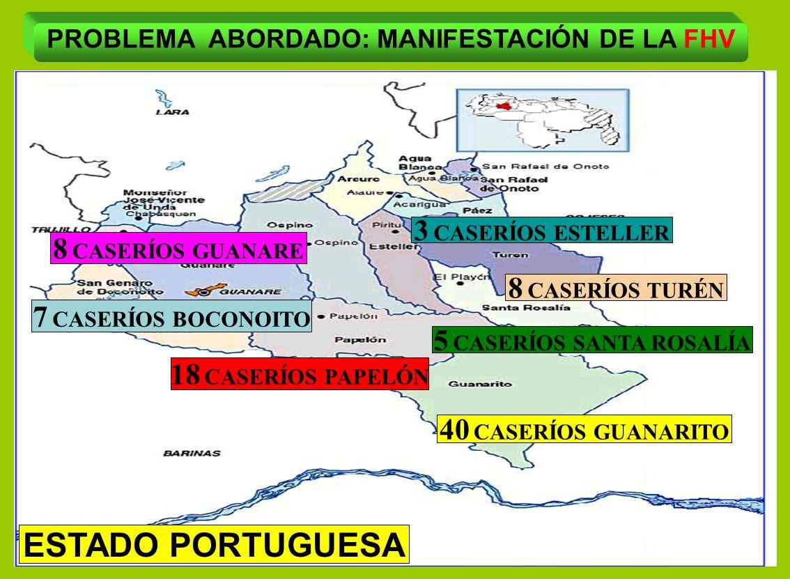40 CASERÍOS GUANARITO 18 CASERÍOS PAPELÓN 8 CASERÍOS GUANARE 7 CASERÍOS BOCONOITO 8 CASERÍOS TURÉN PROBLEMA ABORDADO: MANIFESTACIÓN DE LA FHV ESTADO P