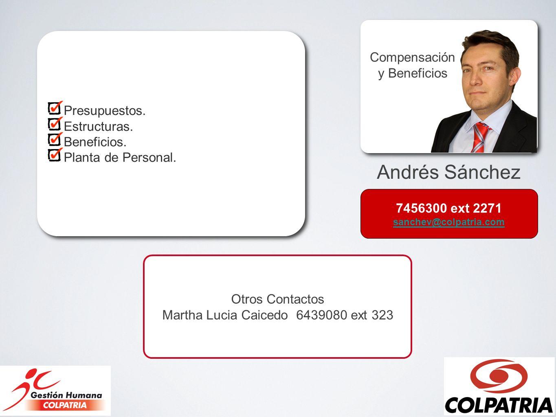 Andrés Sánchez Compensación y Beneficios Presupuestos. Estructuras. Beneficios. Planta de Personal. Presupuestos. Estructuras. Beneficios. Planta de P