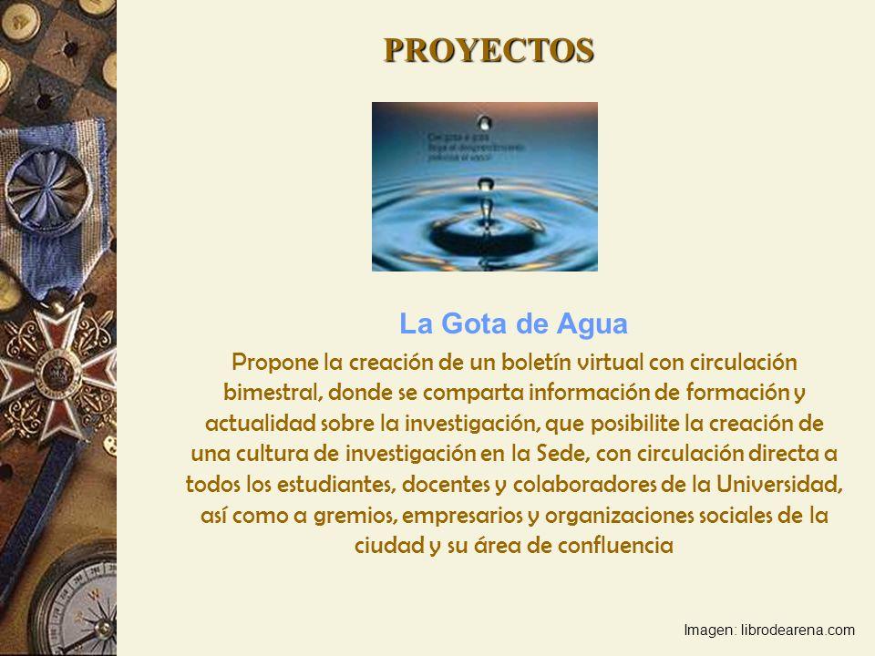 La Gota de Agua Propone la creación de un boletín virtual con circulación bimestral, donde se comparta información de formación y actualidad sobre la