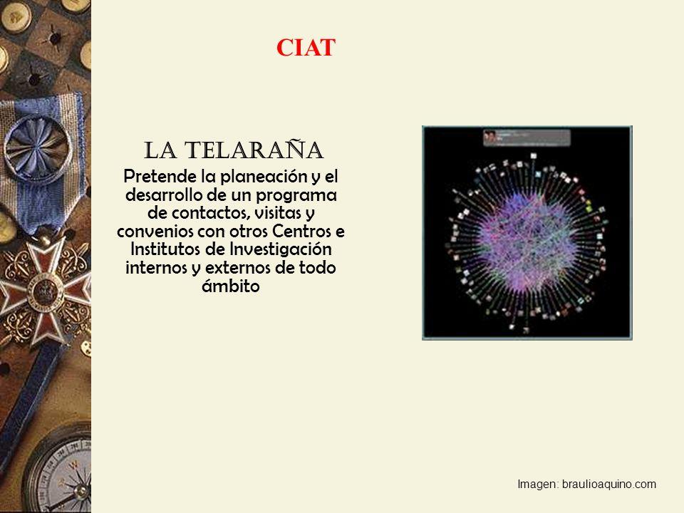 La Telaraña Pretende la planeación y el desarrollo de un programa de contactos, visitas y convenios con otros Centros e Institutos de Investigación in