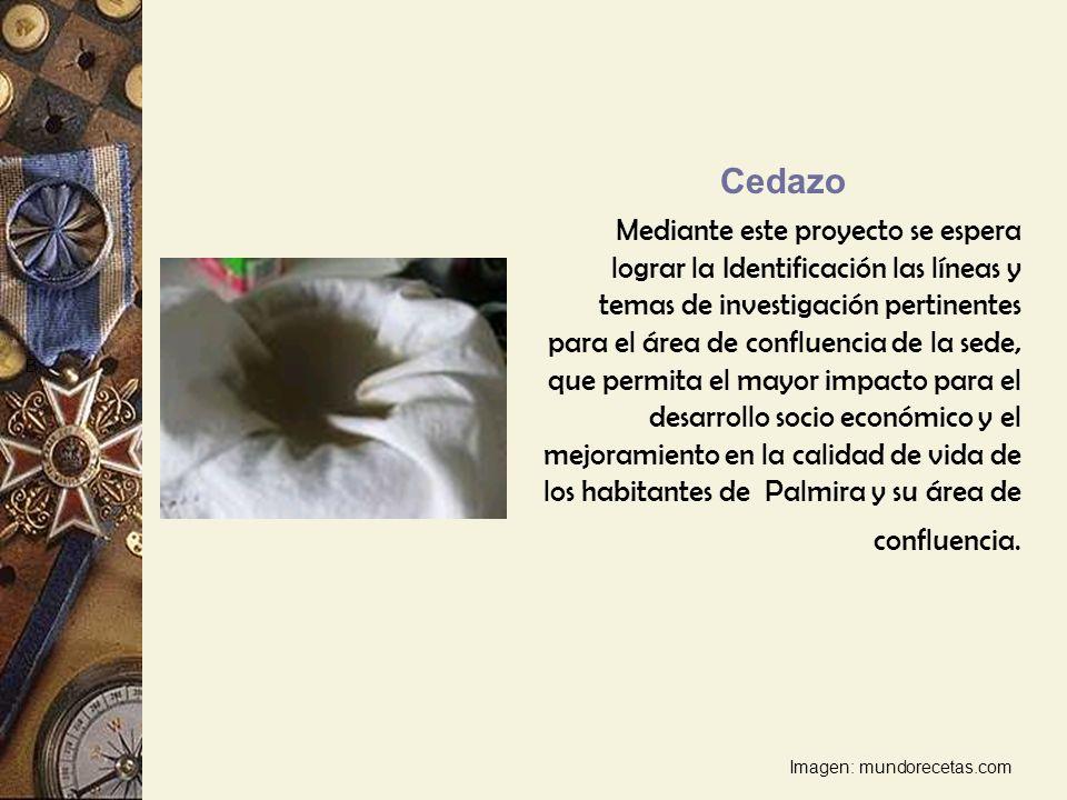 Cedazo Mediante este proyecto se espera lograr la Identificación las líneas y temas de investigación pertinentes para el área de confluencia de la sed