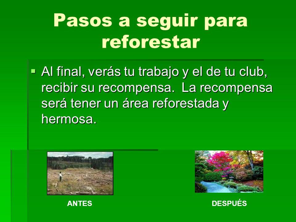 Conclusión Ya has visto cómo puedes realizar un proyecto de reforestación.