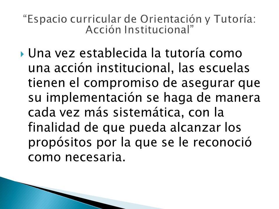 Una vez establecida la tutoría como una acción institucional, las escuelas tienen el compromiso de asegurar que su implementación se haga de manera ca