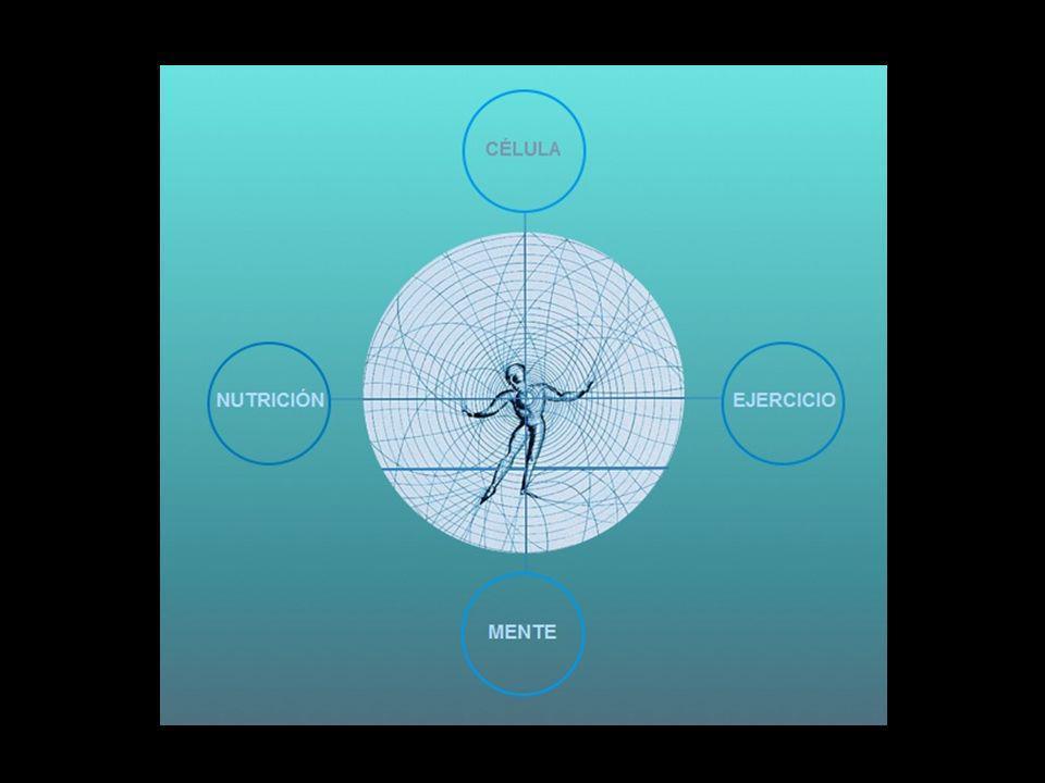 Las teorías de Quinton, con sus Leyes de la Constancia, nos dieron una visión del origen humano y de la salud basada en la Vida y en el equilibrio hol
