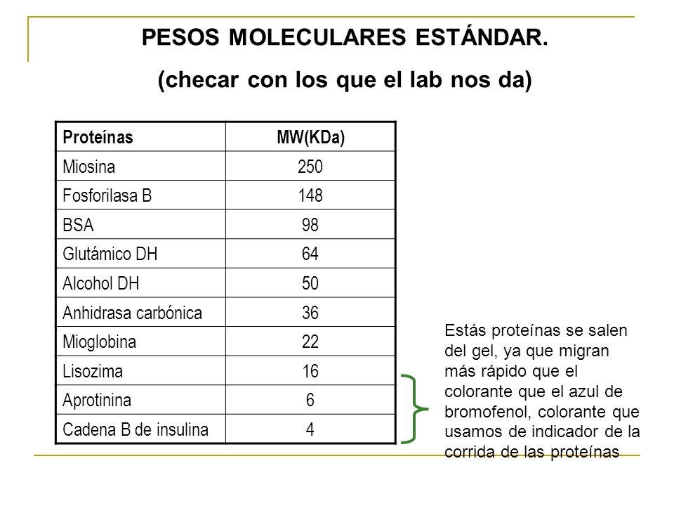 ProteínasMW(KDa) Miosina250 Fosforilasa B148 BSA98 Glutámico DH64 Alcohol DH50 Anhidrasa carbónica36 Mioglobina22 Lisozima16 Aprotinina6 Cadena B de i