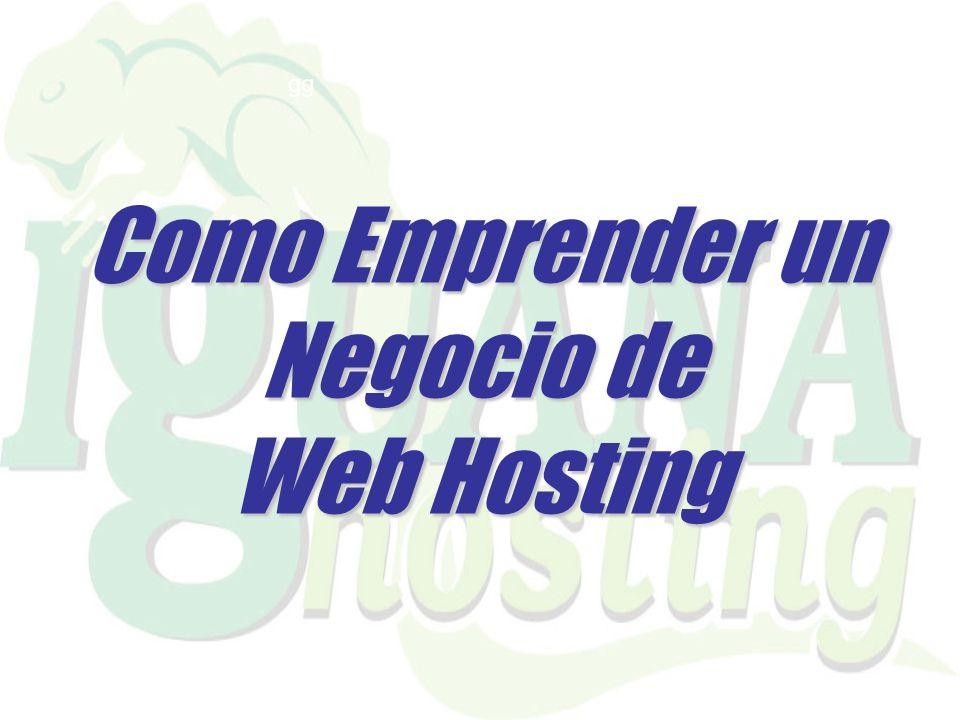 Como Emprender un Negocio de Web Hosting gg
