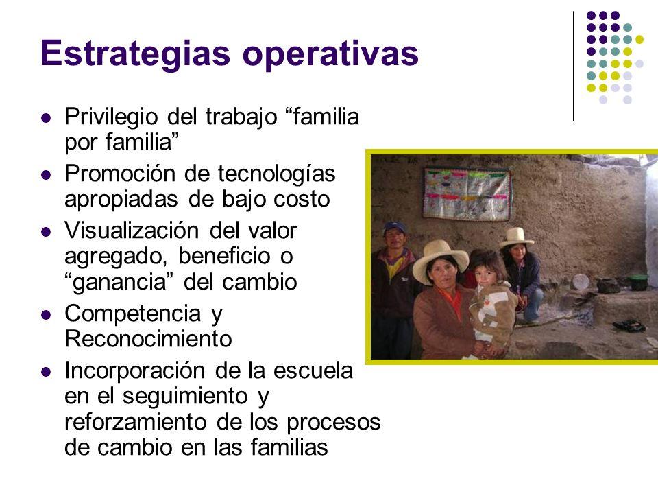 Estrategias operativas Privilegio del trabajo familia por familia Promoción de tecnologías apropiadas de bajo costo Visualización del valor agregado,