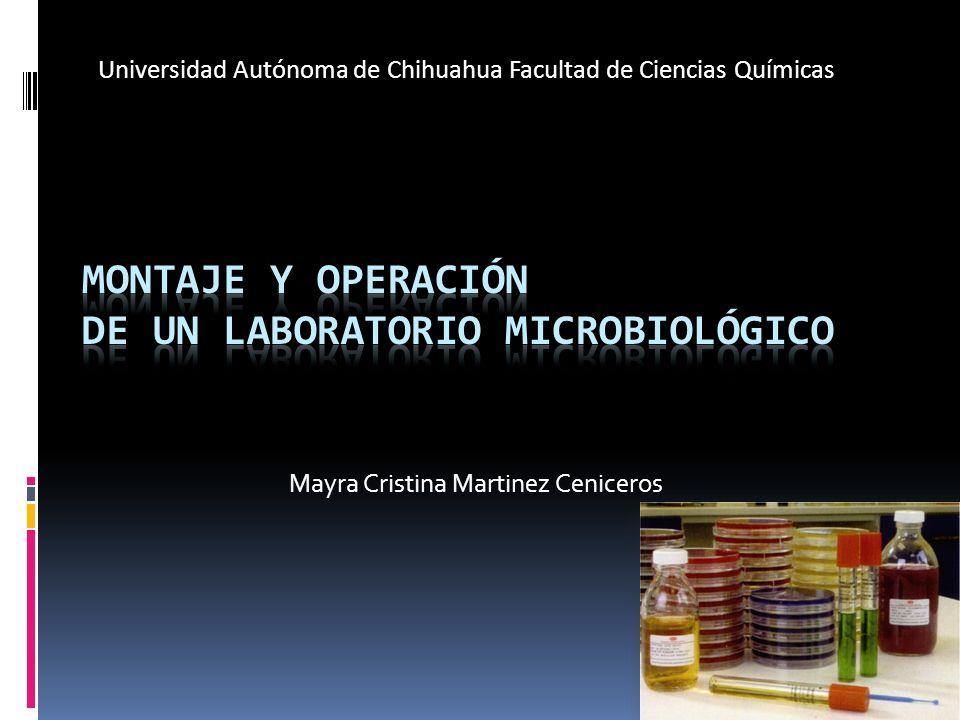 Mayra Cristina Martinez Ceniceros Universidad Autónoma de Chihuahua Facultad de Ciencias Químicas
