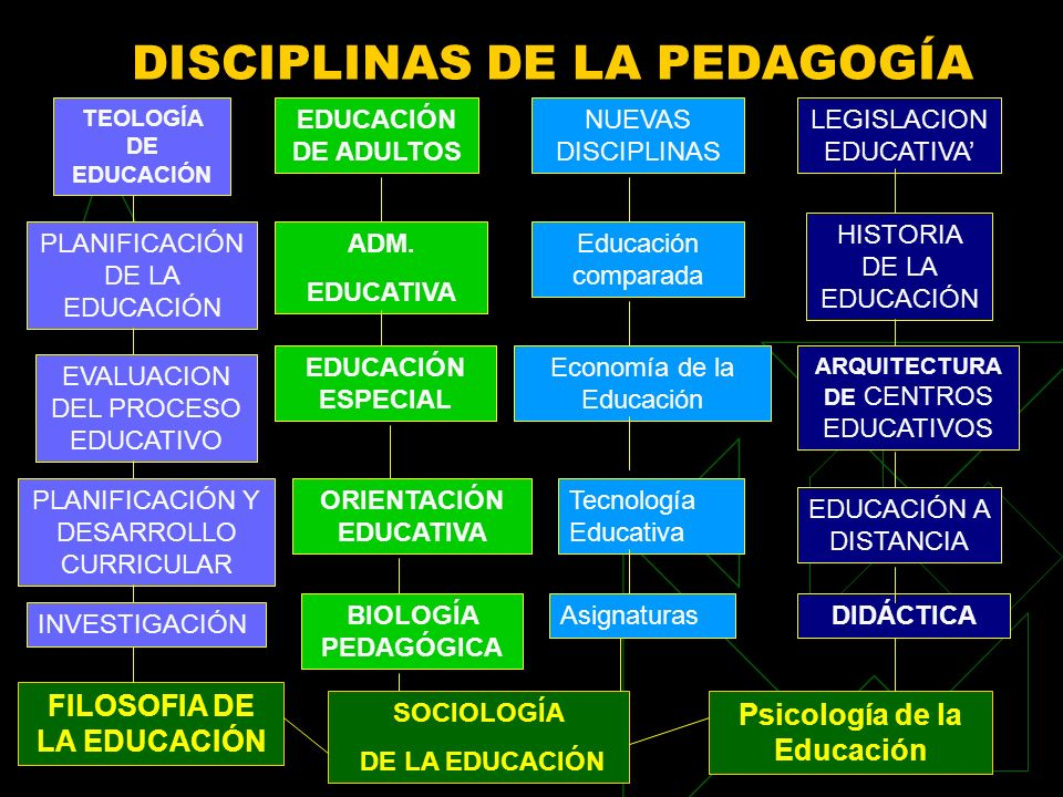 DISCIPLINAS DE LA PEDAGOGÍA TEOLOGÍA DE EDUCACIÓN EDUCACIÓN DE ADULTOS NUEVAS DISCIPLINAS LEGISLACION EDUCATIVA PLANIFICACIÓN DE LA EDUCACIÓN EVALUACI