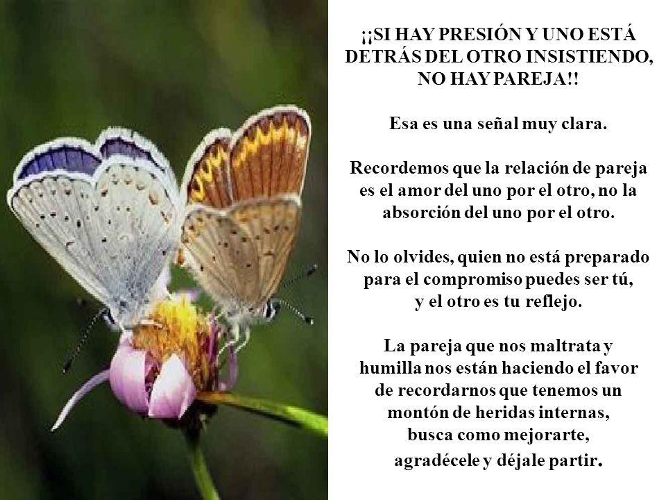¡¡SI HAY PRESIÓN Y UNO ESTÁ DETRÁS DEL OTRO INSISTIENDO, NO HAY PAREJA!.