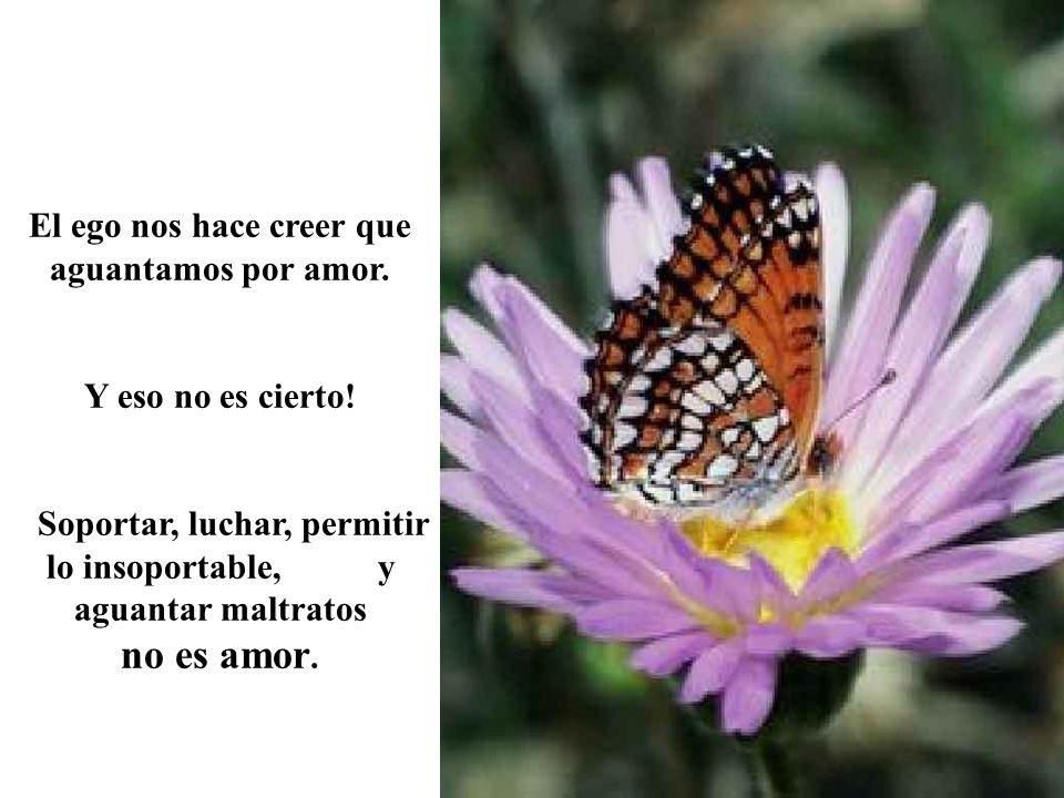 ¡¡¡Que tengas un Divino día con el Amor Incondicional!!.