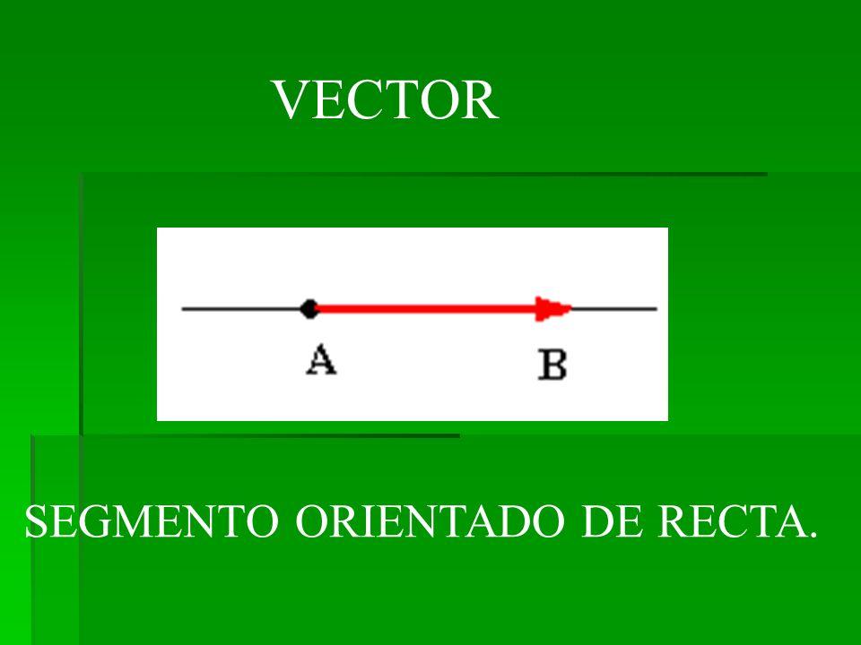 SEGMENTO ORIENTADO DE RECTA. VECTOR