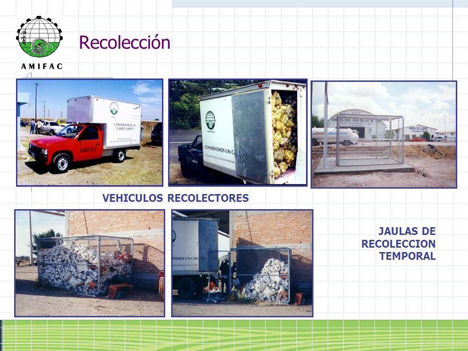 Recolección VEHICULOS RECOLECTORES JAULAS DE RECOLECCION TEMPORAL