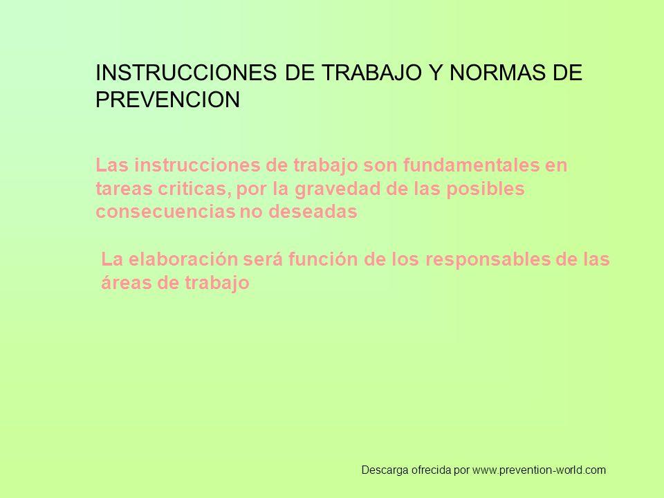 INSTRUCCIONES DE TRABAJO Y NORMAS DE PREVENCION Las instrucciones de trabajo son fundamentales en tareas criticas, por la gravedad de las posibles con