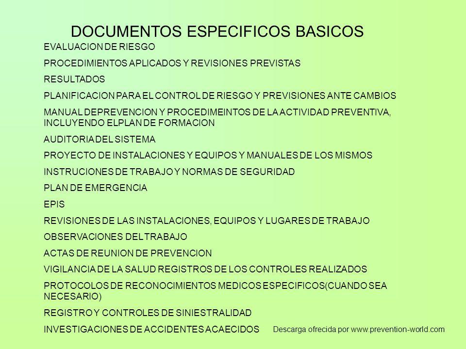 DOCUMENTOS ESPECIFICOS BASICOS EVALUACION DE RIESGO PROCEDIMIENTOS APLICADOS Y REVISIONES PREVISTAS RESULTADOS PLANIFICACION PARA EL CONTROL DE RIESGO