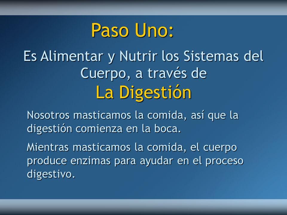 Es Alimentar y Nutrir los Sistemas del Cuerpo, a través de La Digestión Nosotros masticamos la comida, así que la digestión comienza en la boca. Mient
