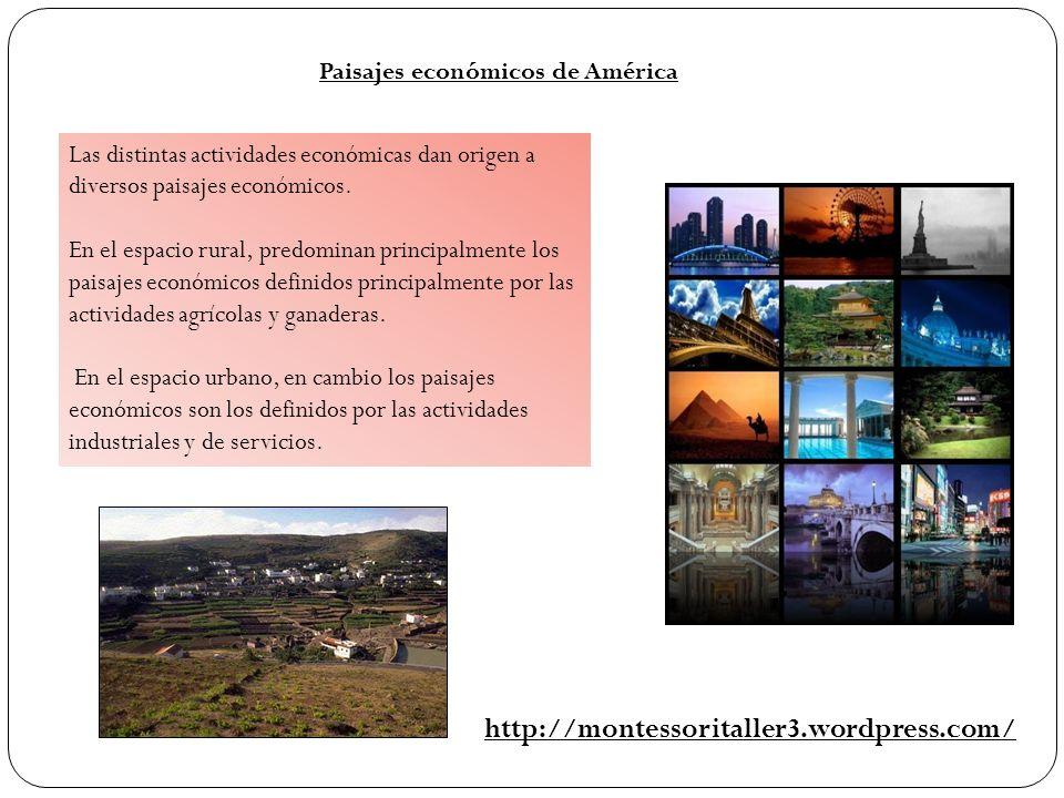 Paisajes económicos de América Las distintas actividades económicas dan origen a diversos paisajes económicos. En el espacio rural, predominan princip