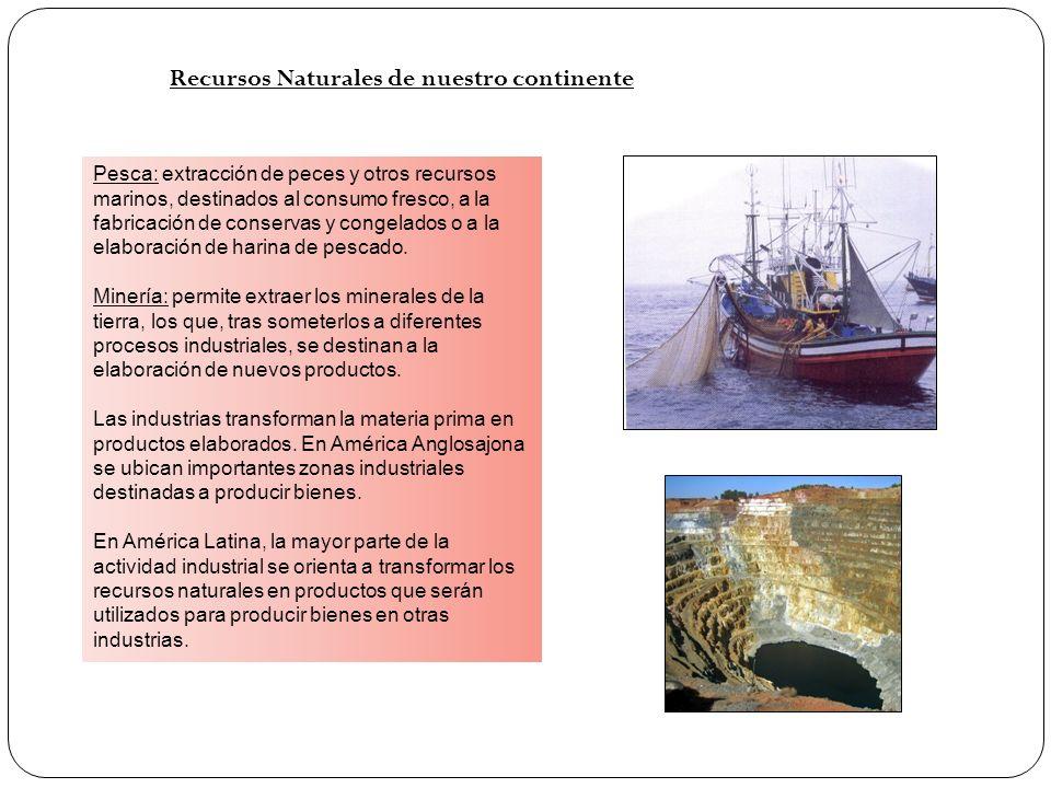 Recursos Naturales de nuestro continente Pesca: extracción de peces y otros recursos marinos, destinados al consumo fresco, a la fabricación de conser