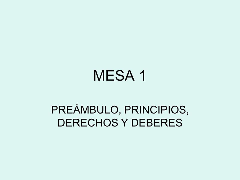 MESA 1 PREÁMBULO, PRINCIPIOS, DERECHOS Y DEBERES
