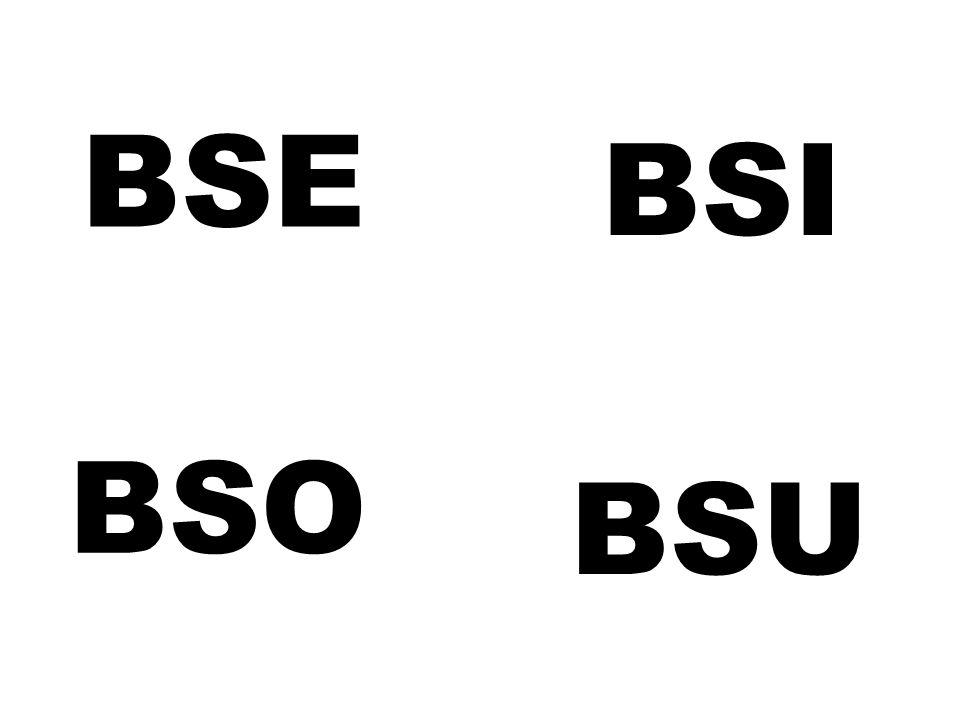 BSE BSI BSO BSU